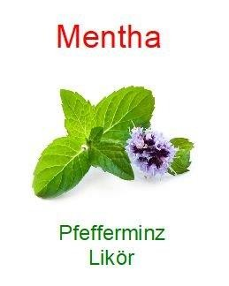 Mentha 20 % Vol.