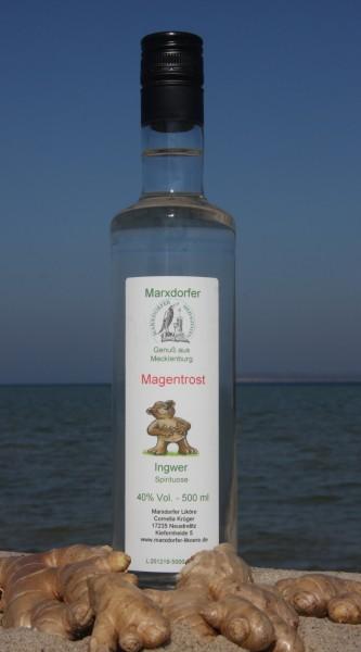 Magentrost 40 % Vol. Ingwer-Spirituose